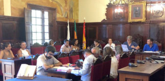 Un momento de la sesión plenaria del día 13 de Agosto