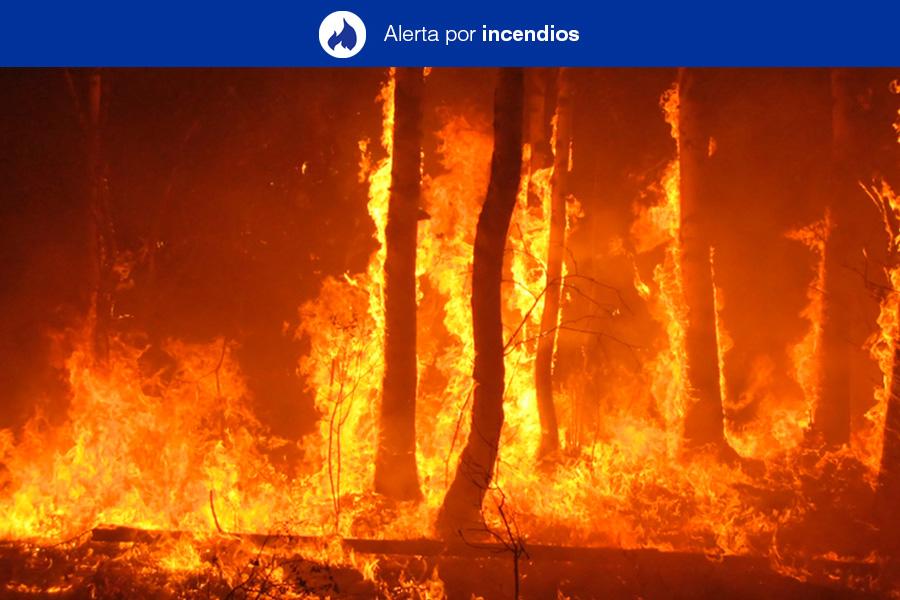 Se declara la situación de Alerta por Riesgo de Incendios Forestales y Temperaturas Máximas en Gran Canaria