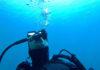 El biólogo marino, instructor de buceo y especialista en fotografía científica y de la Naturaleza, Alejandro de Vera