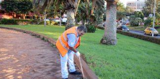 Un operario en labores de mantenimiento
