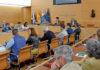 Sesión en el Cabildo de Tenerife. Cedida. NOTICIAS 8 ISLAS.