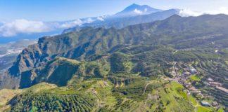 Vista aérea de Tenerife, sector primario. Cedida. NOTICIAS 8 ISLAS