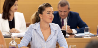 Verónica Meseguer, portavoz adjunta del grupo nacionalista. Cedida. NOTICIAS 8 ISLAS.