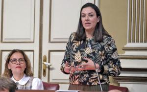 Matilde Fleitas interviniendo en el Pleno. Cedida. NOTICIAS 8 ISLAS.