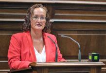 La diputada socialista, Pino González. Cedida. NOTICIAS 8 ISLAS.