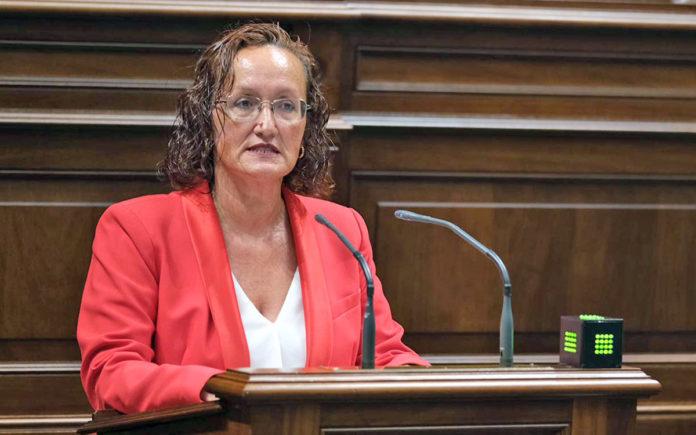Pino González, diputada socialista./ Cedida. NOTICIAS 8 ISLAS.