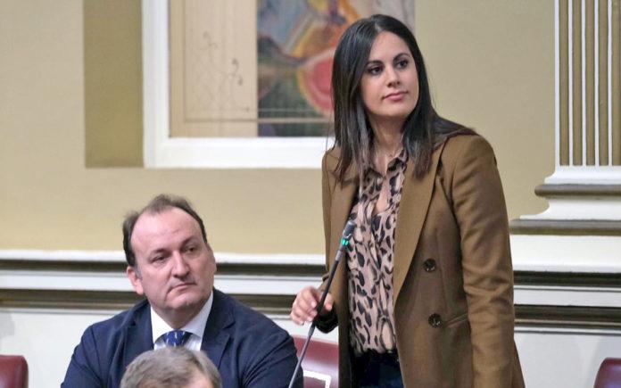 Vidina Espino, portavoz de Cs en el Parlamento. Cedida. NOTICIAS 8 ISLAS.