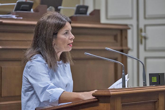 Socorro Beato, diputada del Grupo Nacionalista Canario. Cedida. NOTICIAS 8 ISLAS.