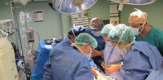 Operación de trasplante. Cedida. NOTICIAS 8 ISLAS