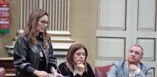 Sandra Domínguez, diputada por Nueva Canarias. Cedida. NOTICIAS 8 ISLAS.
