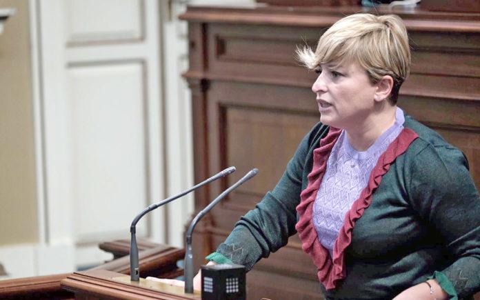 Nayra Alemán, portavoz del Grupo Parlamentario Socialista. Cedida. NOTICIAS 8 ISLAS.