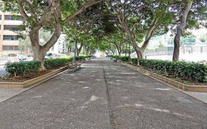 Rambla de Santa Cruz de Tenerife. Trino Garriga. NOTICIAS 8 ISLAS.