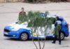 Actuación policial, Santa Cruz de Tenerife, hoy 20 de marzo. Trino Garriga. NOTICIAS 8 ISLAS.