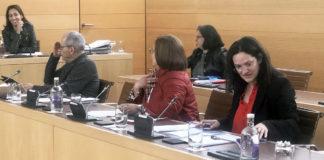 Zaida González, portavoz PP Cabildo. Cedida. NOTICIAS 8 ISLAS.