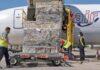 Llega un nuevo cargamento con 49.200 hisopos para el diagnóstico de Covid-19. EFE/Ángel Medina G.