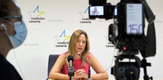 Rosa Dávila, diputada de CC-PNC en el Parlamento de Canarias. Cedida. NOTICIAS 8 ISLAS.