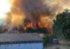 Incendio Forestal en La Palma./ facebook Ayuntamiento de Tijarafe.
