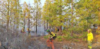 Efectivos de los Equipos de Intervención y Refuerzo en Incendios Forestales de Gesplan actuando en la zona./ Gesplan.