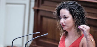 Jana González, diputada del Grupo Nacionalista Canario./ Cedida.