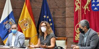 Un instante de la sesión celebrada hoy en el Parlamento de Canarias./ Cedida.