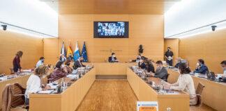 Pleno celebrado hoy en el Cabildo Insular de Tenerife./ Cedida.