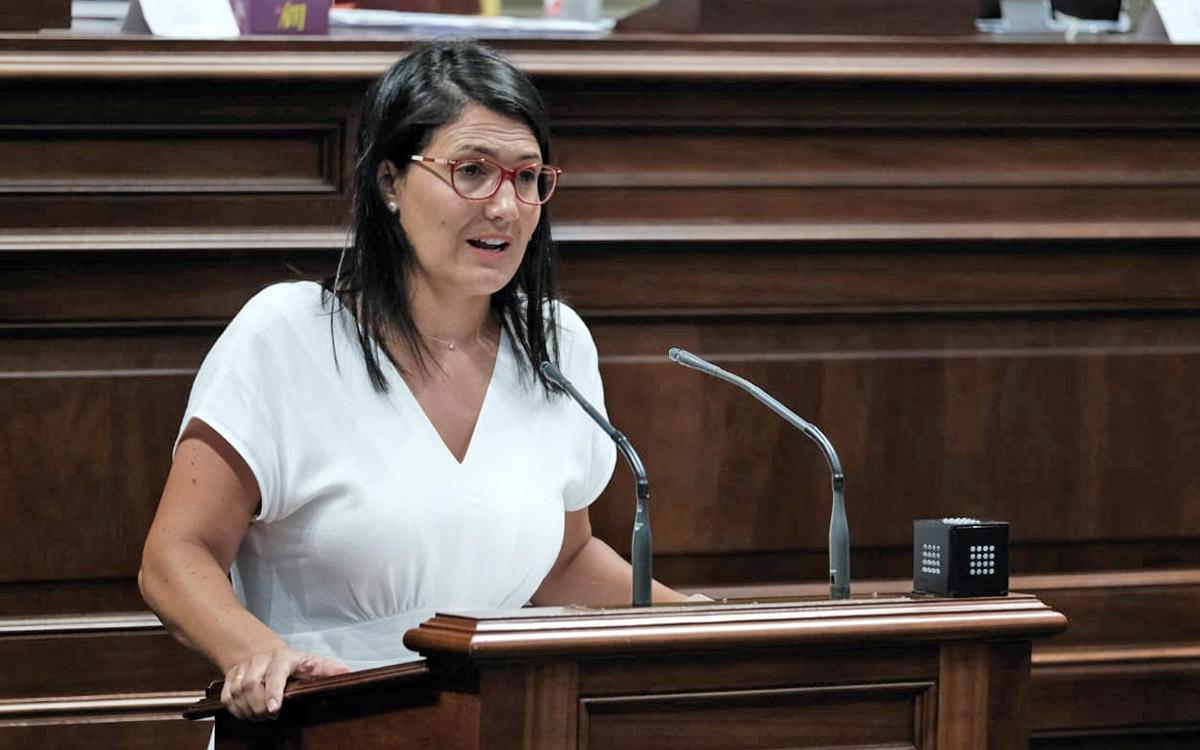 El PSOE solicita que el Plan para la Educación Digital de Canarias incluya al alumnado con discapacidad