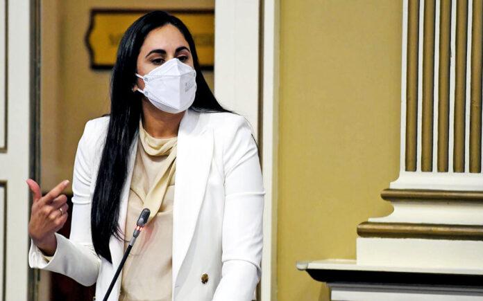 Vidina Espino, portavoz de Cs en el Parlamento de Canarias./ Cedida