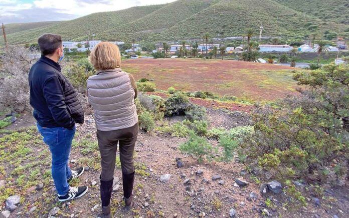 Pepa Luzardo. Instalaciones para migrantes, Las Palmas de Gran Canaria./ Cedida.