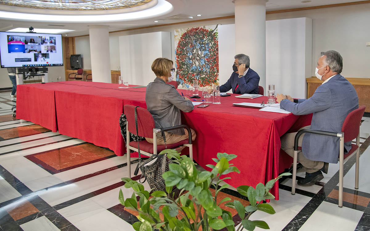 Patronal y sindicatos reconocen en el Consejo Asesor el esfuerzo económico del plan extraordinario de ayudas