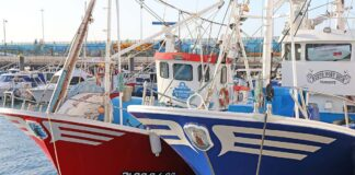 Barcos de pesca sostenible./ Cedida.