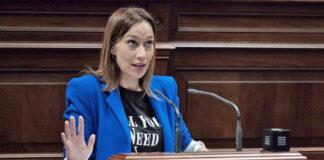 Nira Fierro, presidenta del Grupo Parlamentario Socialista y diputada por Tenerife./ Cedida.