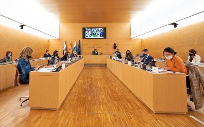 Pleno del Cabildo de Tenerife, 1 de marzo de 2021./ Cedida.