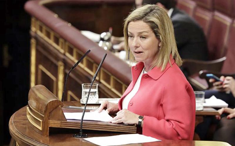 """Oramas acusa al PSOE de apoyar el Plátano de Canarias en las Islas y """"darle la estocada"""" en Madrid"""