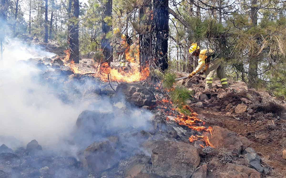 El perímetro y la superficie del incendio de Arico se mantienen estables y se trabaja en su consolidación