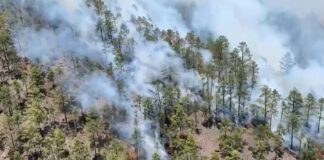Incendio forestal de Arico./ 112.