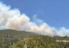 Incendio forestal en Arico, Tenerife./ Cedida.