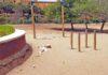 Parque de La Ballena./ Cedida.