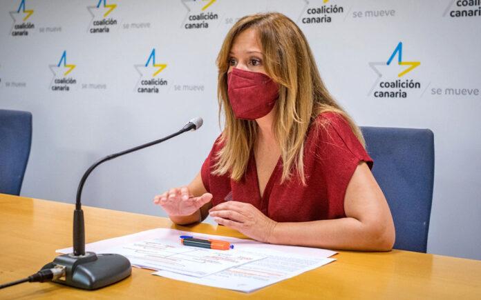 Rosa Dávila, diputada autonómica de CC-PNC por Tenerife./ Cedida.