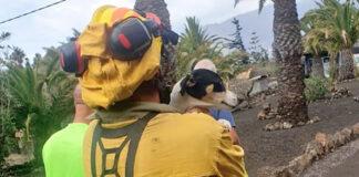BRIF La Palma, evacuación día 23 de septiembre./ Twitter @AT_Brif