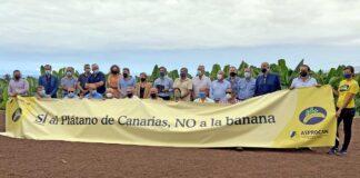 Asamblea General de la Asociación de Organizaciones de Productores de Plátanos de Canarias (ASPROCAN)./ Cedida.