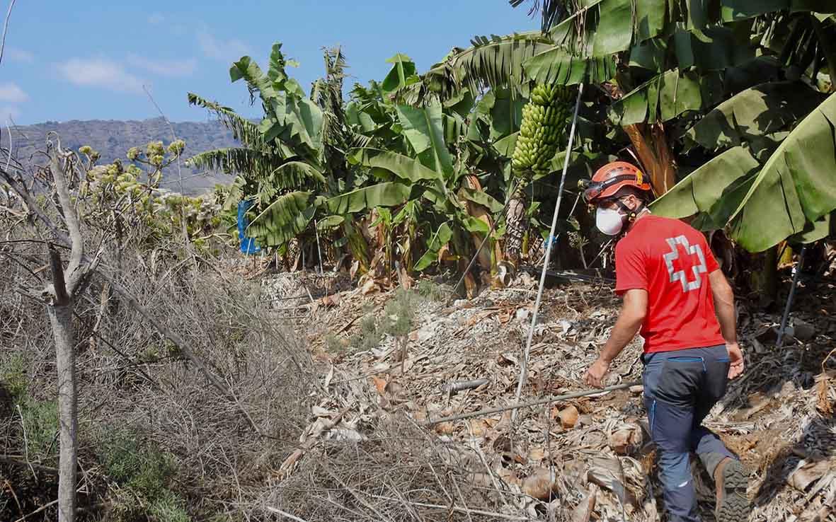 Cabildo, Gobierno y tejido asociativo palmero coordinan una red de ayuda para los afectados por el volcán