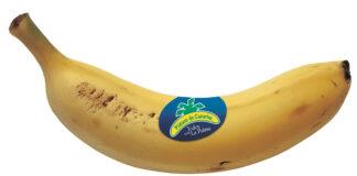 """Plátano de Canarias: """"Todos con La Palma"""""""