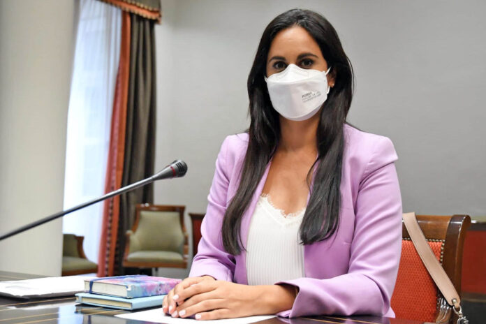 Vidina Espino,portavoz del Grupo Mixto en el Parlamento de Canarias./ Cedida.